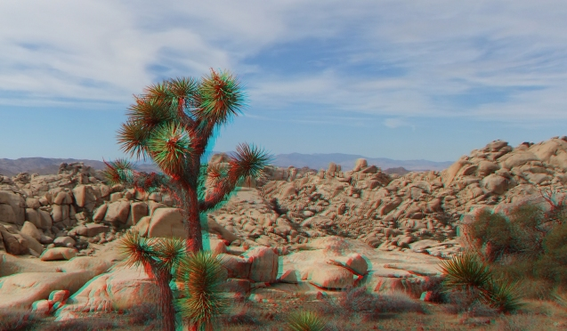 Don Genero Cliff Joshua Tree NP 3D Anaglyph DSCF7121