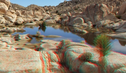 Surprise Tank Joshua Tree NP 3D Anaglyph DSCF2634