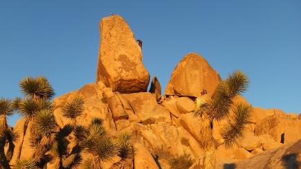 2D Headstone Rock