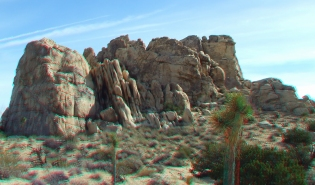 """""""Reef Rock"""" (north face))"""