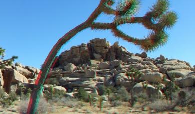 Barker 20120121 3DA 1080p DSCF1220