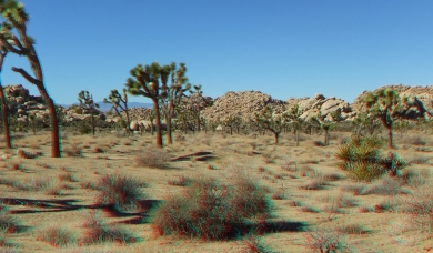 Barker 20120121 3DA 1080p DSCF1254