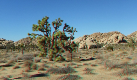 Barker 20120121 3DA 1080p DSCF1265