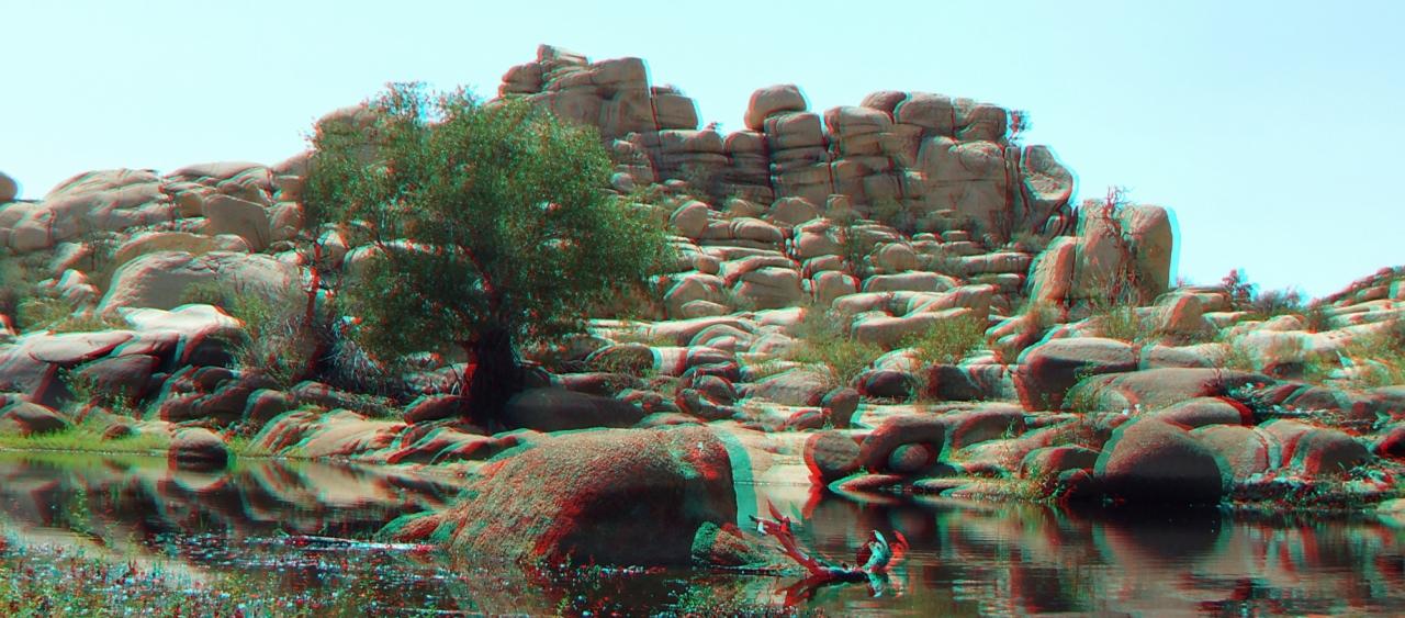 Barker Dam Joshua Tree NP 3da 1080p dscf5600