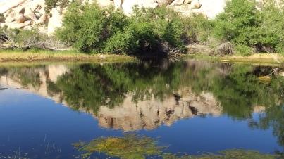 Barker Dam Joshua Tree NP DSCF6557