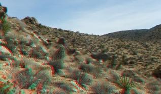 Barker Hill 20130319 3DA 1080p DSCF2487