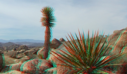 Barker Hill 20130319 3DA 1080p DSCF2503