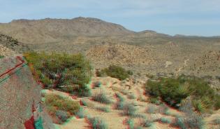 Barker Hill 20130319 3DA 1080p DSCF2533