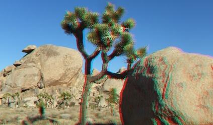 Cap Rock 20140102 3DA 1080p DSCF0527