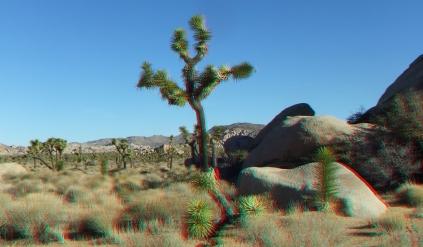 Cap Rock 20140102 3DA 1080p DSCF0528