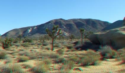 Cap Rock 20140102 3DA 1080p DSCF0599