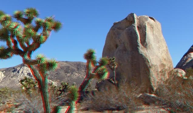 Cap Rock Beaver Boulder 3DA 1080p DSCF7284