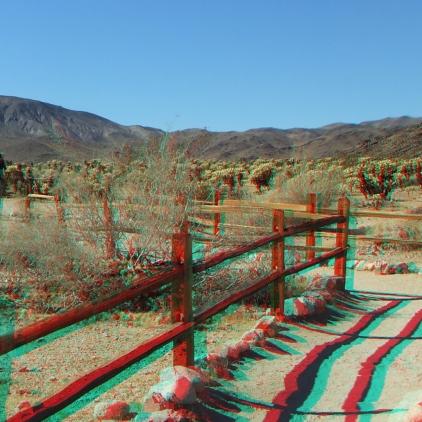 Cholla 20121105 3DA 1080p DSCF5816