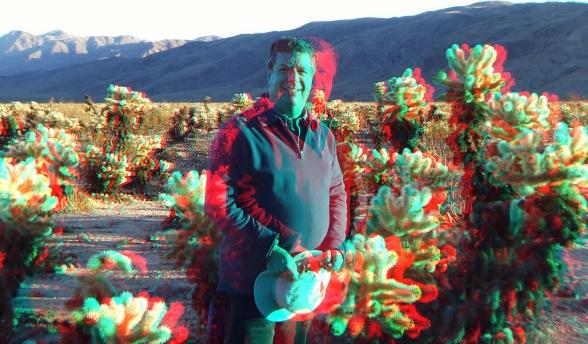 Cholla Garden John Murbach 3DA 2016p DSCF0975