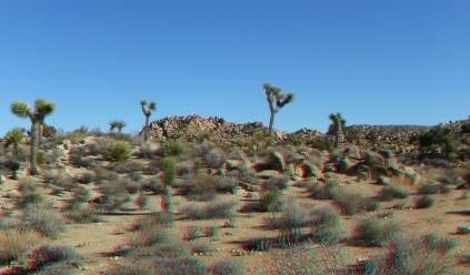 Desert Queen 20130121 3DA 1080p DSCF0205