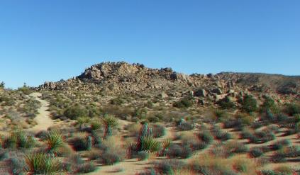 Desert Queen 20130121 3DA 1080p DSCF0207