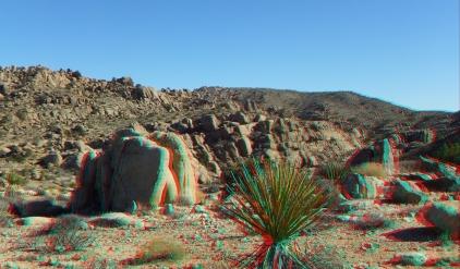 Desert Queen 20130121 3DA 1080p DSCF0208