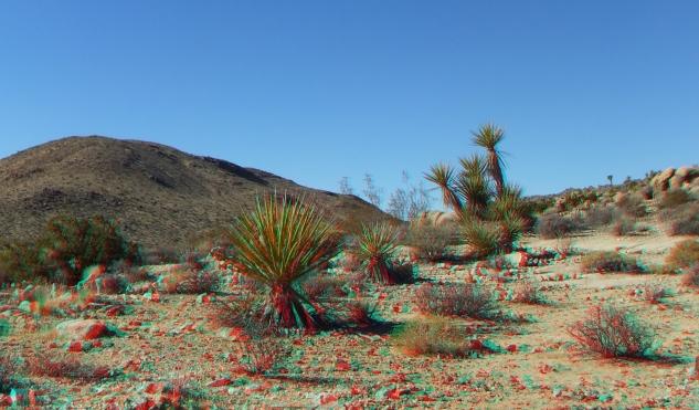 Desert Queen 20130121 3DA 1080p DSCF0213
