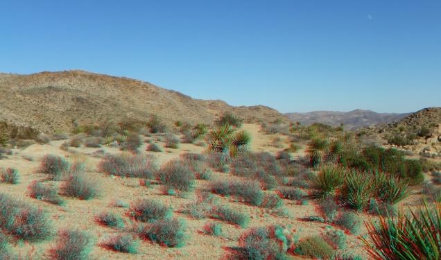 Desert Queen 20130121 3DA 1080p DSCF0214