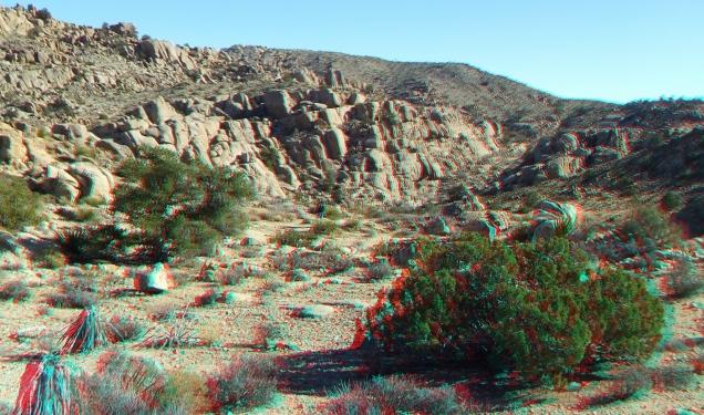 Desert Queen 20130121 3DA 1080p DSCF0215