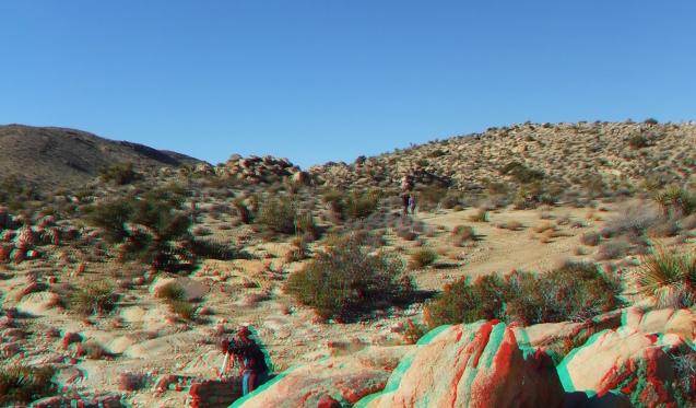 Desert Queen 20130121 3DA 1080p DSCF0224