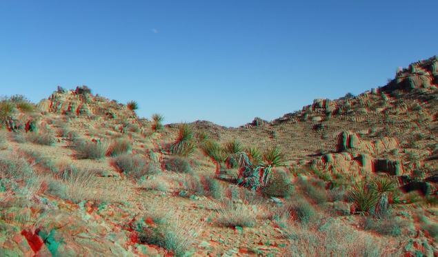 Desert Queen 20130121 3DA 1080p DSCF0227