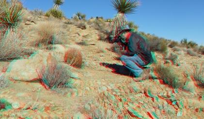 Desert Queen 20130121 3DA 1080p DSCF0237
