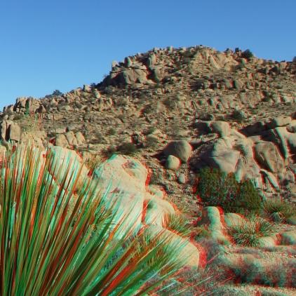 Desert Queen 20130121 3DA 1080p DSCF0243