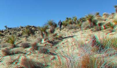 Desert Queen 20130121 3DA 1080p DSCF0245