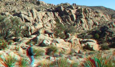 Desert Queen 20130121 3DA 1080p DSCF0248