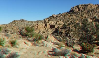 Desert Queen 20130121 3DA 1080p DSCF0249