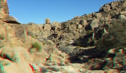 Desert Queen 20130121 3DA 1080p DSCF0252