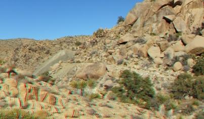 Desert Queen 20130121 3DA 1080p DSCF0265