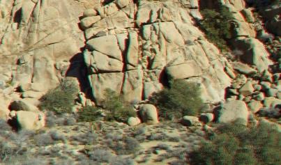 Desert Queen 20130121 3DA 1080p DSCF0267