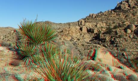 Desert Queen 20130121 3DA 1080p DSCF0268