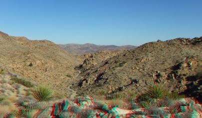 Desert Queen 20130121 3DA 1080p DSCF0290