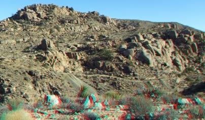 Desert Queen 20130121 3DA 1080p DSCF0291
