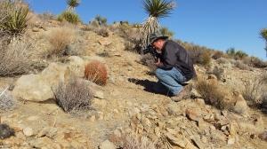 Desert Queen Mine Joshua Tree NP DSCF0237