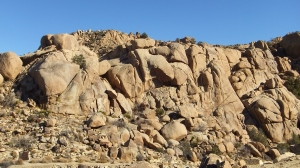 The Gold Nuggets rock-climbing area