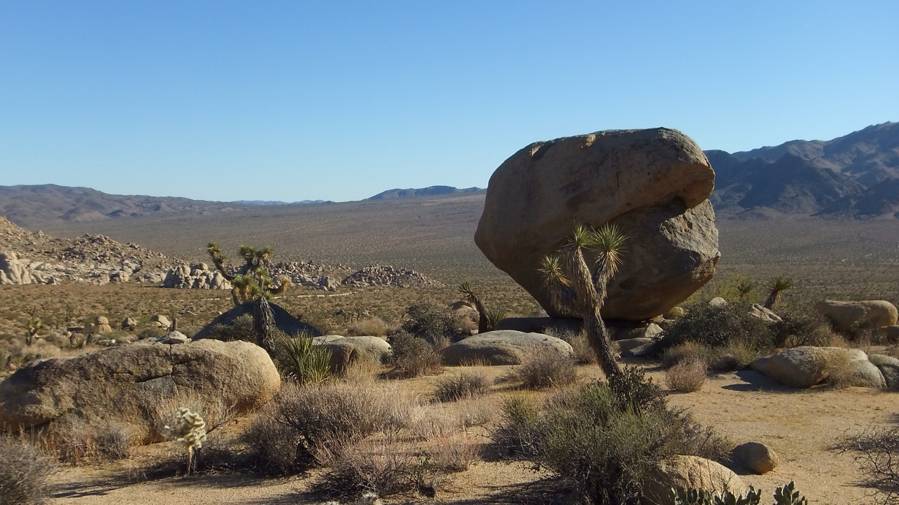 balanced-rock-joshua-tree-np-dscf8237