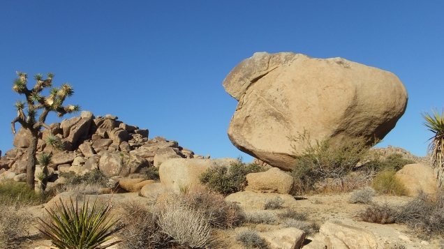 balanced-rock-joshua-tree-np-dscf8257