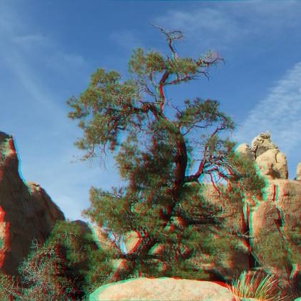 Hidden Valley 20121211 3DA 1080p DSCF7668