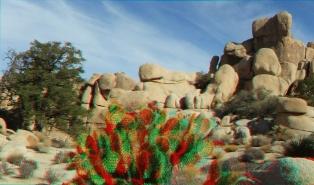 Hidden Valley 20121211 3DA 1080p DSCF7687