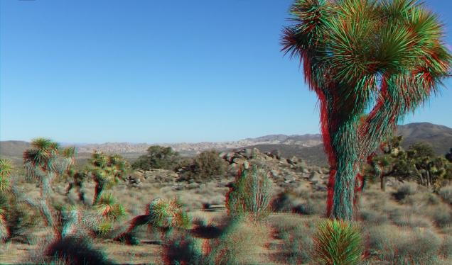 Keys View Road 20131125 3DA 1080p DSCF8528