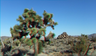 Keys View Road 20131125 3DA 1080p DSCF8551