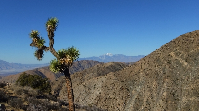 San Gorgonio Mountain 01