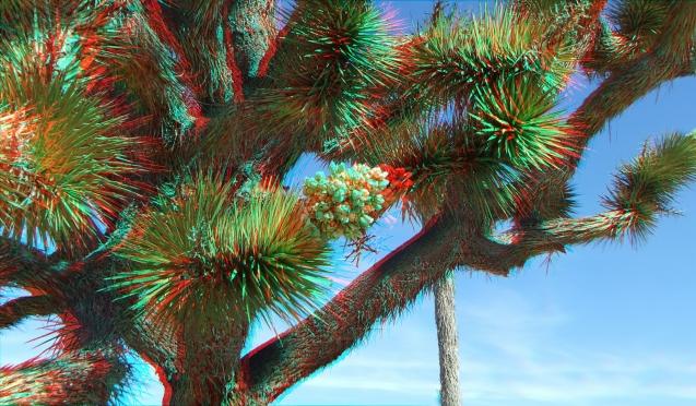 Superbloom 20130401 3DA 1080p DSCF2694
