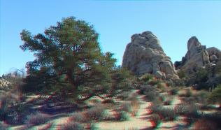 Hidden Valley 20121228 3DA 1080p DSCF9201