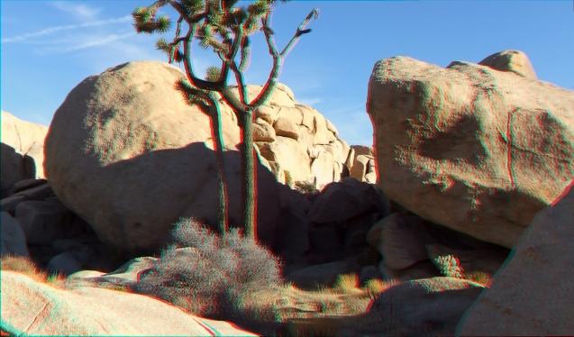 HV Park Blvd Rocks 3DA 1080p DSCF8571