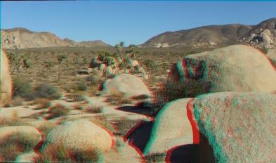 HV Turtle 20140928 3DA 1080P DSCF5731